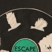 Escape animation vinyl